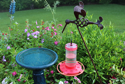 feeder hanging hummingbird p envy yard htm glass green bloom